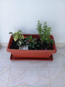 تصميم احواض زرع بجدة