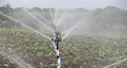 ec3db9062cf51c3e81584d04ee44408be272e6d21db7104996f7_1280_irrigation